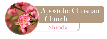 Apostolic Christian Church
